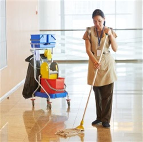Picture for category Floor Cleaning